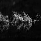 Glen Lyon - Dark Water Reflections by Kevin Skinner