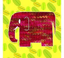 knitty elephant Photographic Print