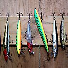 Fish Lures by Shelly Harris