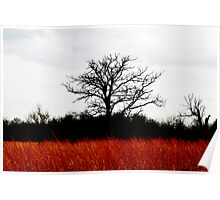 Red Tree Poster
