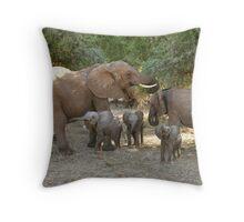 ELEPHANT FAMILY - SAMBURU Throw Pillow