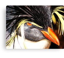 If looks could kill... Canvas Print