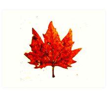 Golden Brown Art Print