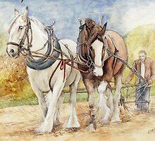 Shire Horses  by morgansartworld