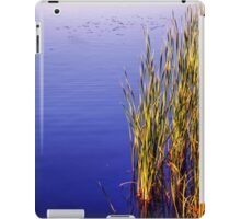 Blue Calm iPad Case/Skin