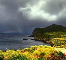 Island Storm by Chantal Steyn