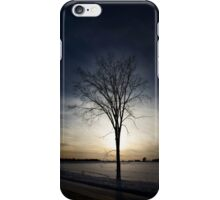 Cornell Farm iPhone Case/Skin
