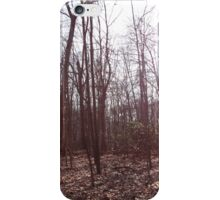 US Forest  iPhone Case/Skin