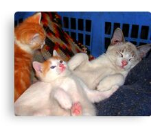 Chillin out together Canvas Print