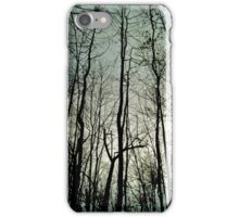 New Jersey Fores iPhone Case/Skin