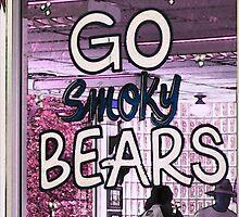 Homage To The Bears by raindancerwoman