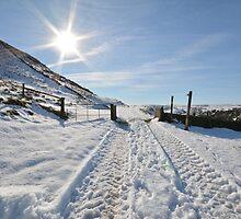 Snowy scene by risphoto