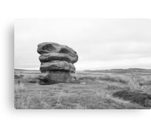 Lonely rock on moors Canvas Print