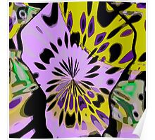 Pansy Explosion Poster