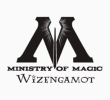 Wizengamot - Ministry of Magic by Fawkes