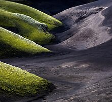 Moss vs Sand by ArnarBergur