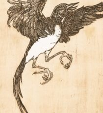 Magpie: One for Sorrow Sticker