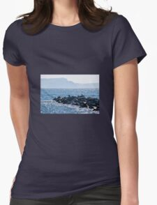 Cormorants At The Cobb Womens Fitted T-Shirt