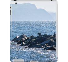 Cormorants At The Cobb iPad Case/Skin