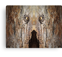 Woody 84 Canvas Print