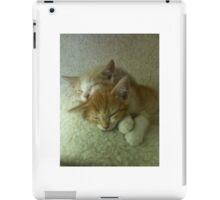 Sleepy Orange Kittens iPad Case/Skin