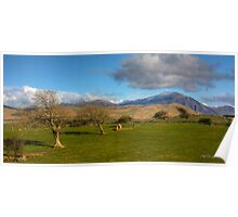 Fields And Fells Poster