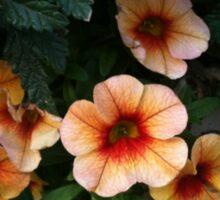 Pretty Peachy Flowers Sticker