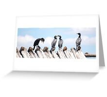 Funny cormorants Greeting Card