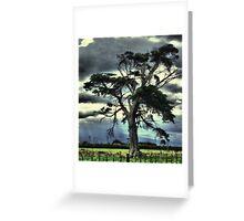 My Lonley Tree #2 Greeting Card