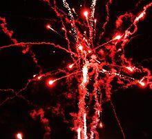 Bonfire Night, Ynysangharad Park, Pontypridd, November 5th, 2008 by Victoria Morton