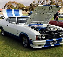Australian Muscle by Rod Wilkinson