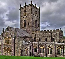 St Davids Cathedral by griffin