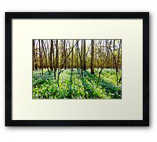 Shadows at Stone Bridge Framed Print