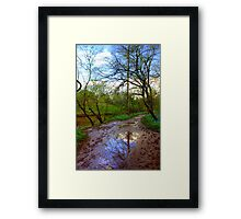 Reflection at Stone Bridge Framed Print
