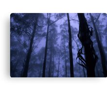 Forest Mist Canvas Print