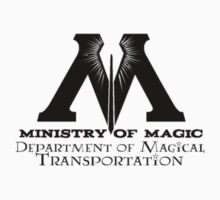 Ministry of Magic - Transportation by Fawkes
