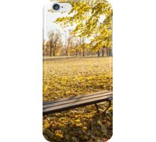 Lonely wooden bench iPhone Case/Skin
