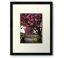 Suburban Spring Framed Print