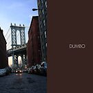 DUMBO - Manhattan Bridge View by Vanpinni