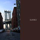 DUMBO - Manhattan Bridge View by Vanpinni