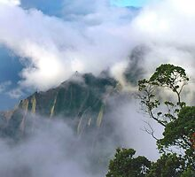 Clearing Storm, Kalalau Valley by Stephen Vecchiotti