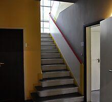 Bauhaus : Meisterhäuser by metronomad