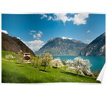 spring scenery at lake lucern Poster