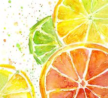 Juicy Citrus Fruit by Olga Shvartsur