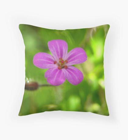 Herb Robert Throw Pillow