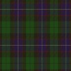 00013 Mitchell Clan Tartan  by Detnecs2013