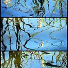 Pond Life - Triptych by Kitsmumma