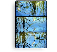 Pond Life - Triptych Canvas Print