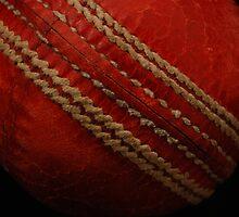 Cricket Ball by DeeEss