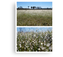 Morning Frost on Dangars Lagoon - Diptych Canvas Print